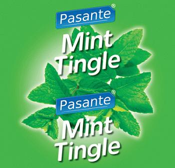 Pasante Mint Tingle Condoms:ถุงยางอนามัยยี่ห้อ Pasante กลิ่น มิ้นต์