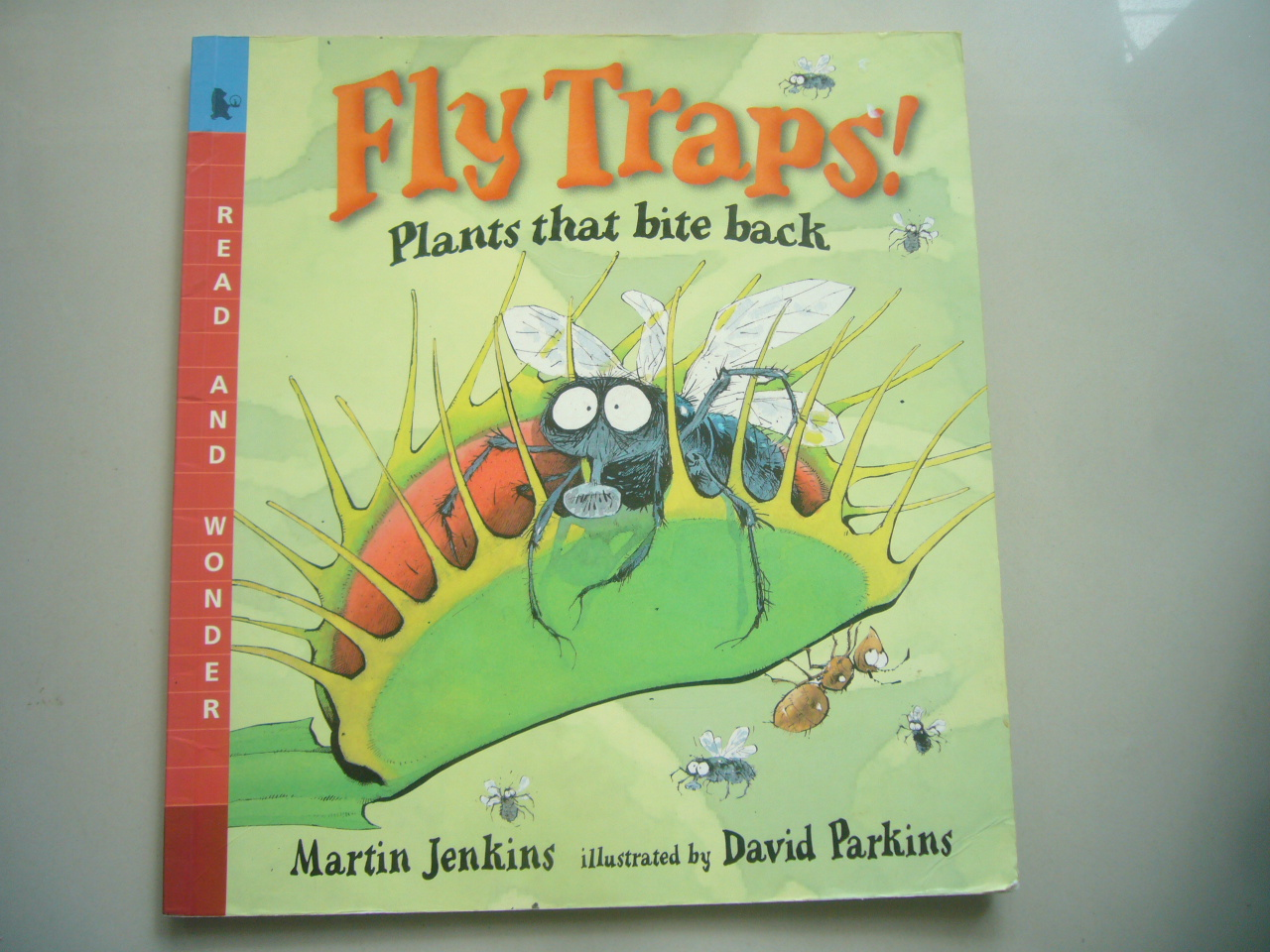 Fly Traps! Plant That Bite Back