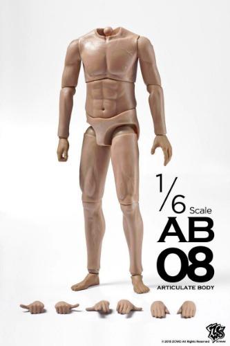 ZCWO 1/6 SCALE ARTICULATE BODY