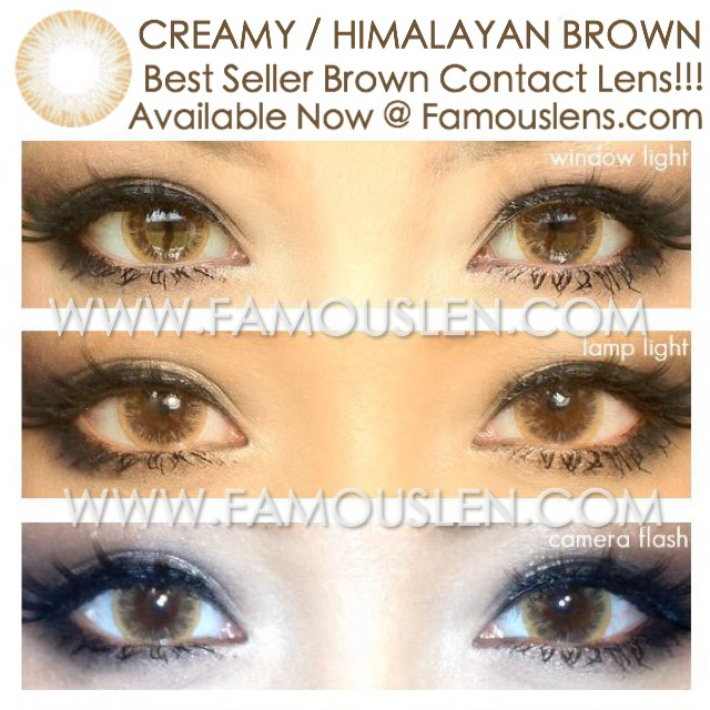 Creamy Himalayan Brown คอนแทคเลนส์สีน้ำตาล ไม่ตัดขอบ พริตตี้ดอล Eyeberry อายเบอร์รี่ คอนแทคเลนส์