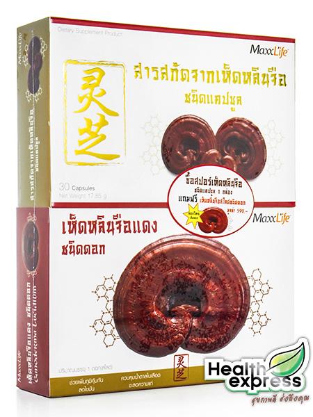 MaxxLife Ganoderma Lacidum Extract แม็กซ์ไลฟ์ สารสกัดจากเห็ดหลินจือ บรรจุ 30 แคปซูล