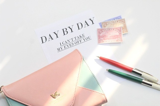 day by day pouch