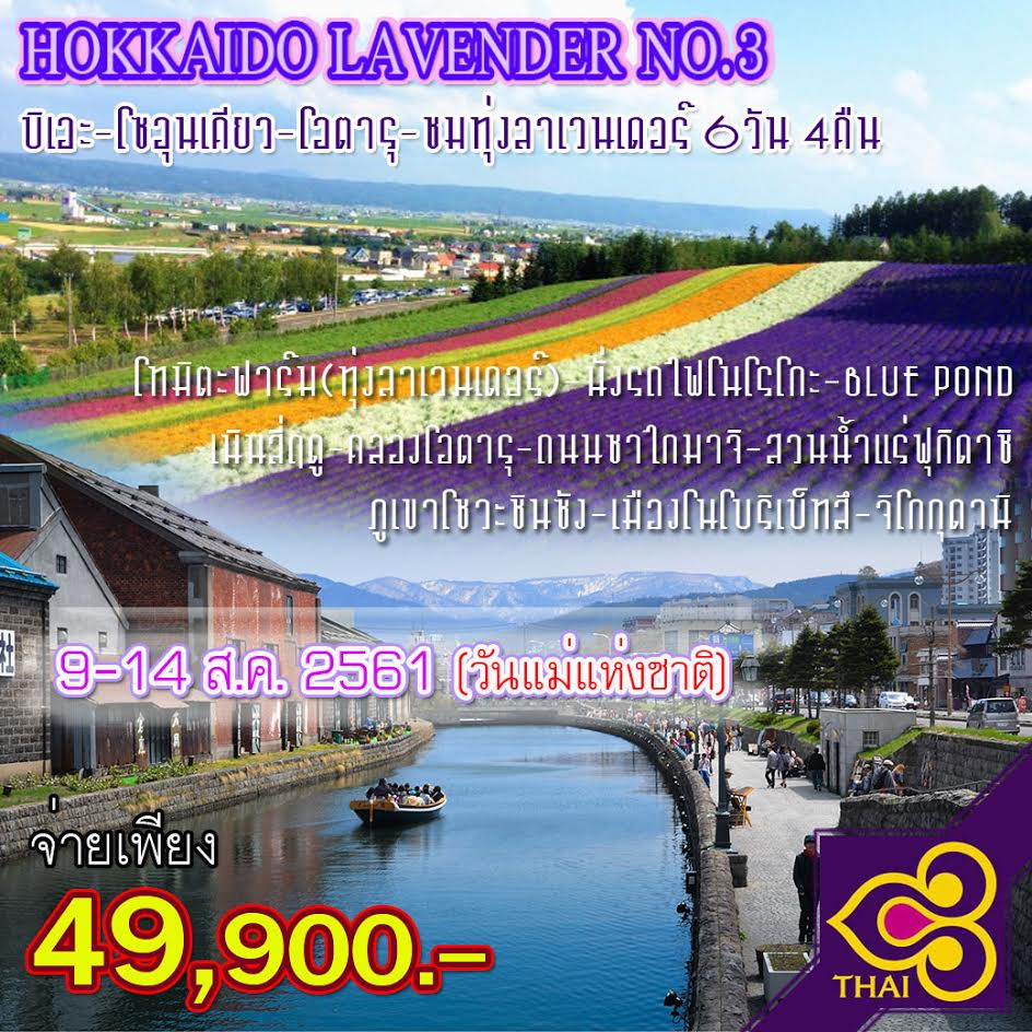 JGC HOKLAVENDER NO.3 ทัวร์ ญี่ปุ่น HOKKAIDO LAVENDER NO.3 บิเอะ โซอุนเคียว โอตารุ ชมทุ่งลาเวนเดอร์ 6 วัน 4 คืน บิน TG