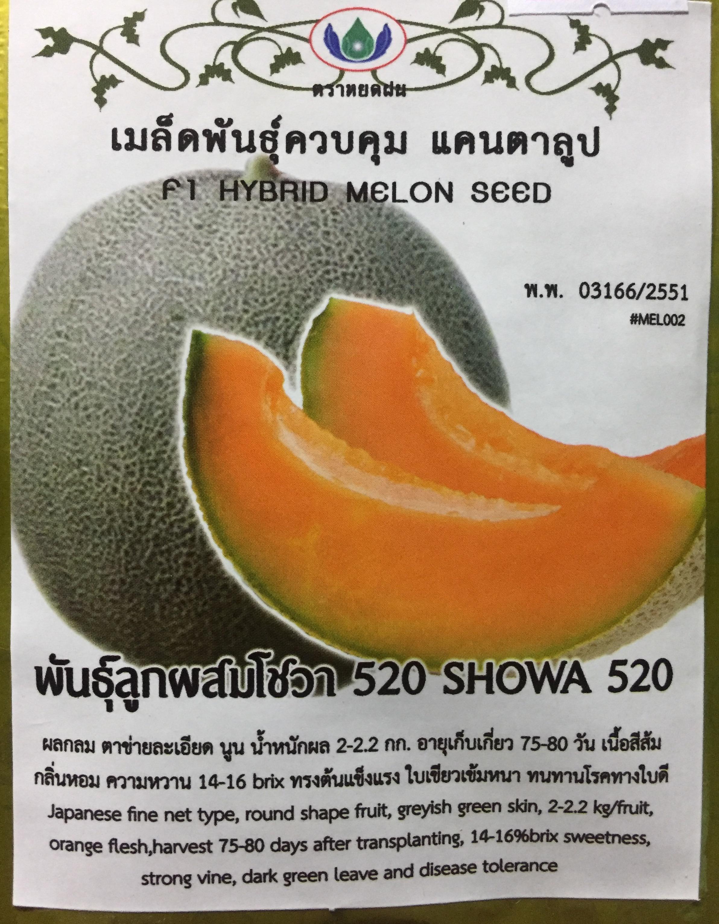 แคนตาลูป โชวา เนื้อส้ม (10-14เมล็ด)